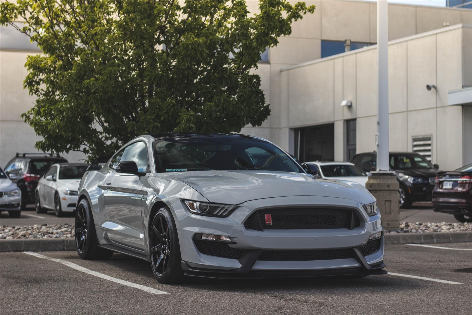 The Ultimate Track Weapon Ford Mustang Shelby GT350R